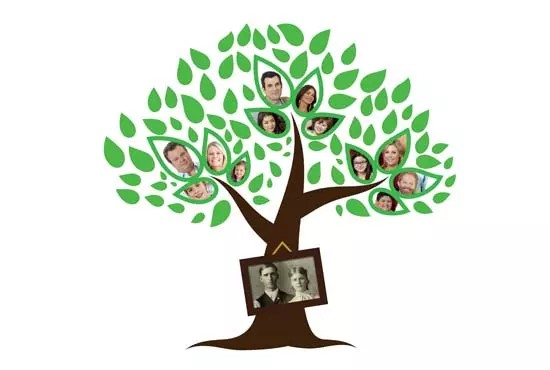 I will make awesome family tree and photobooth frames - funniest gigs on Fiverr