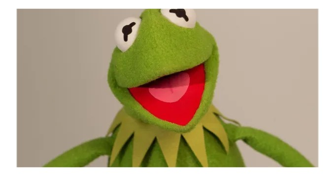 I will say anything you want in a kermit impression - funniest gigs on Fiverr