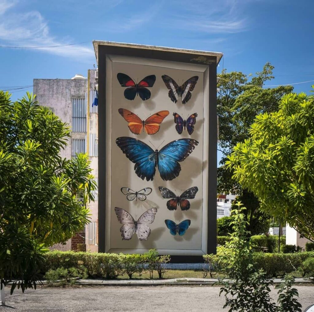 Mariposas del Yucatan , Cancun, Mexico | Butterfly mural by street artist Mantra