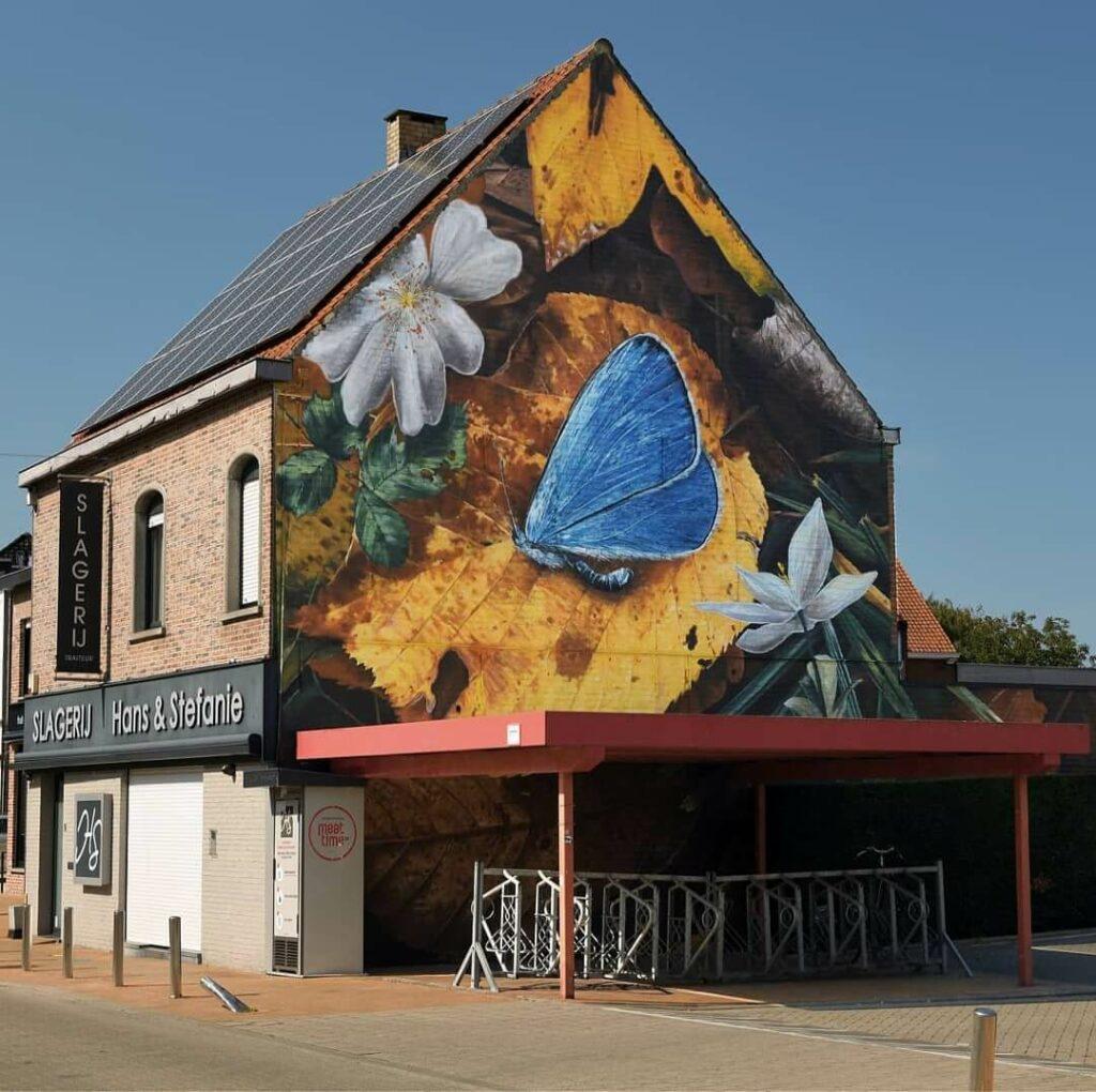 Nature morte de Lysandra, Gullegem, Belgium | Butterfly mural by street artist Mantra