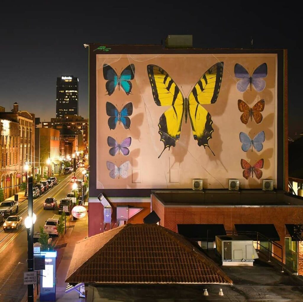 The Line Little Rock, AR, USA | Butterfly mural by street artist Mantra