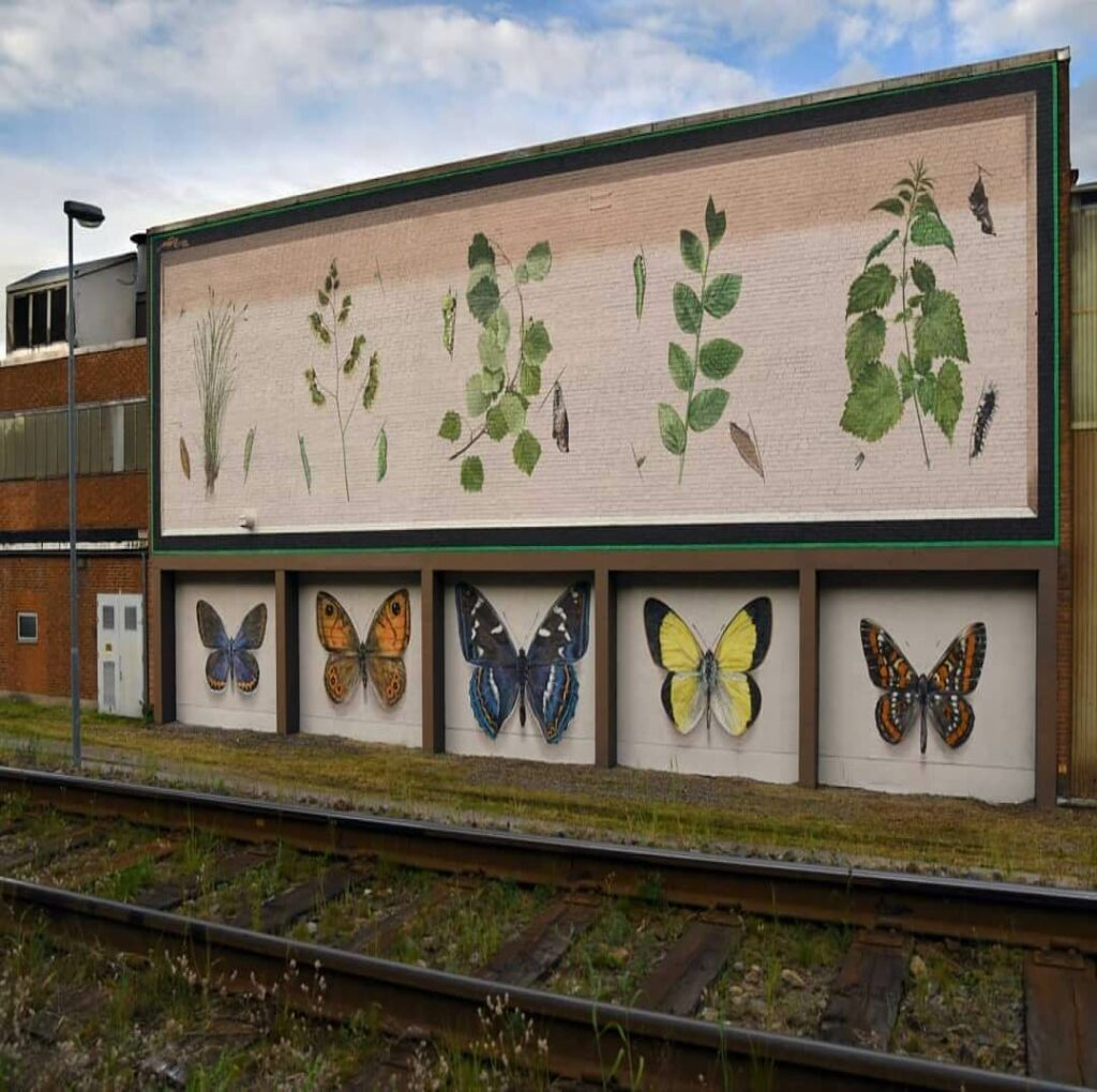 The illustrated Metamorphosis, Overum, Sweden | Butterfly mural by street artist Mantra