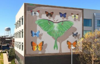 Street artist Mantra paints imposing butterfly murals on buildings around the world